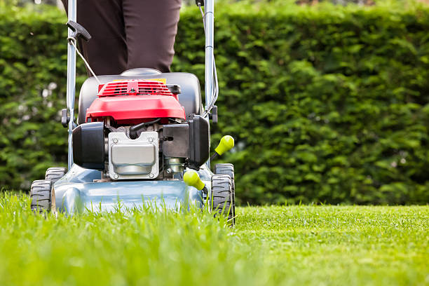 Mowing the grass Mowing the grass mowing stock pictures, royalty-free photos & images