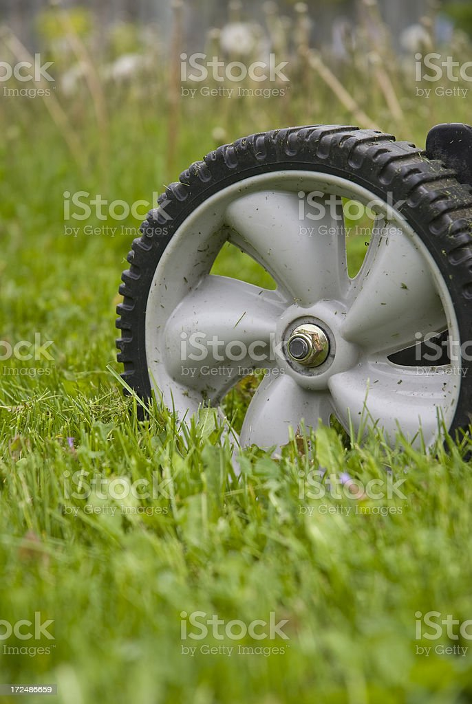 Mowing the grass... royalty-free stock photo