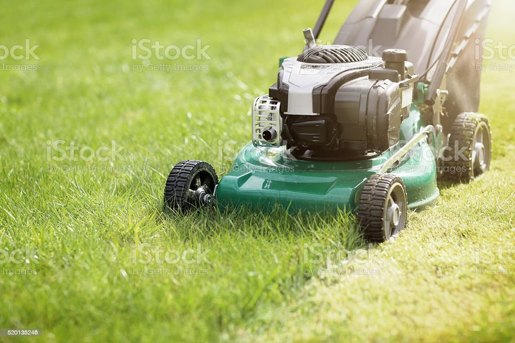 Mowing The Grass Stock Photo Download Image Now Istock