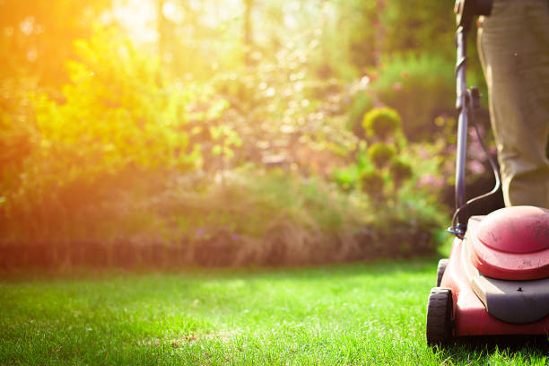 Mowing the grass. The gardener mows the grass with a red electric mower. Work in the garden, spring cleaning. Care for the garden and grass. mowing stock pictures, royalty-free photos & images
