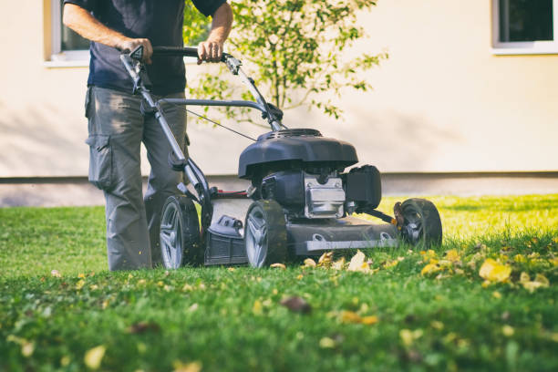 Mowing the grass with a lawn mower in early autumn. Gardener cuts the lawn in the garden. mowing stock pictures, royalty-free photos & images