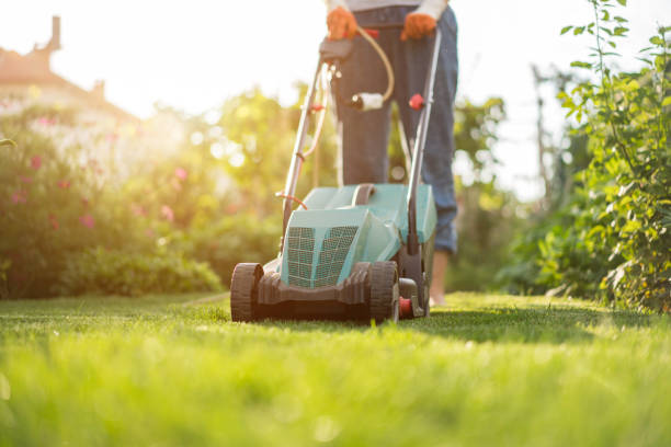 Mowing the lawn Mowing the lawn mowing stock pictures, royalty-free photos & images