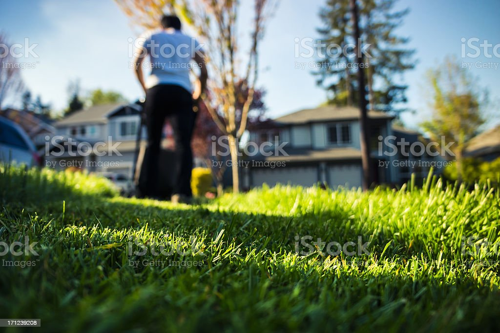 Mowing The Lawn stock photo
