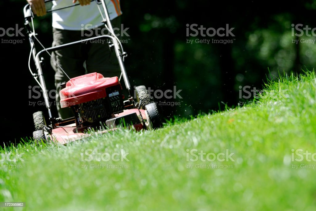 Mowing the lawn. royalty-free stock photo