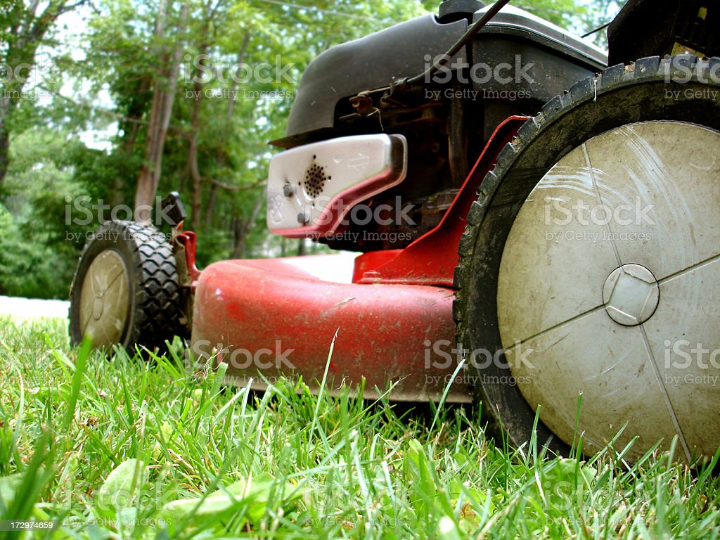 Mowing the Lawn royalty-free stock photo
