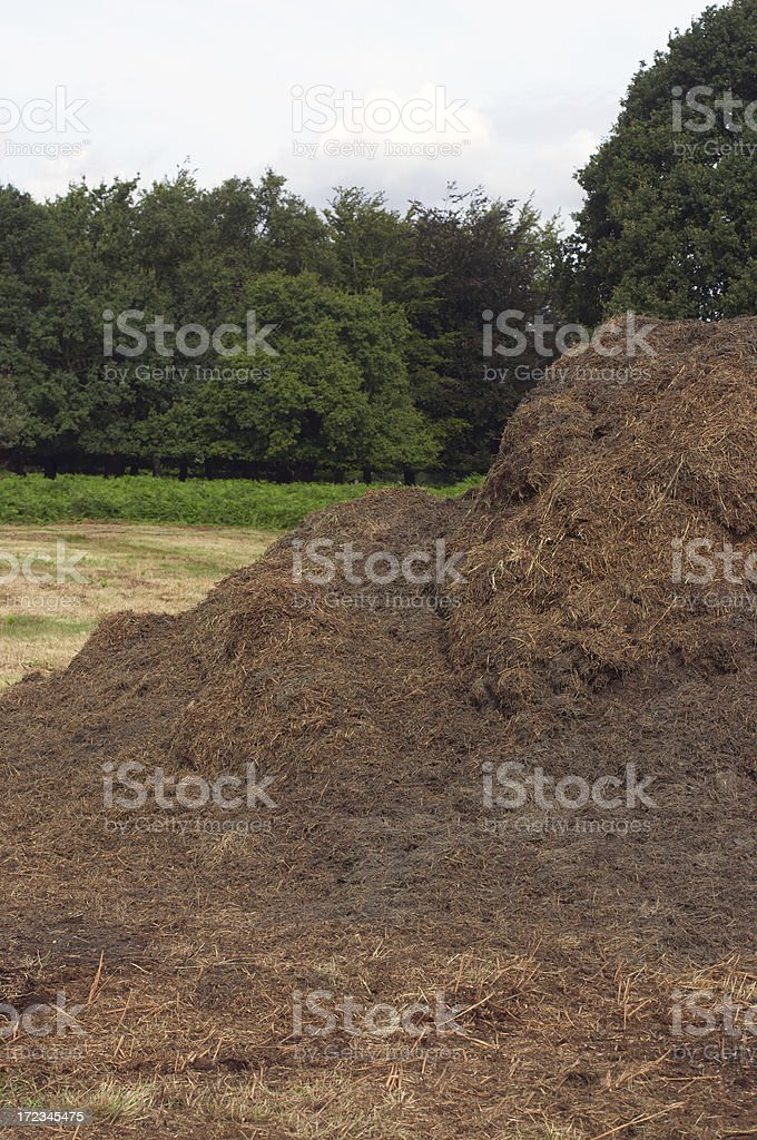 Mown grass and silage mound stock photo