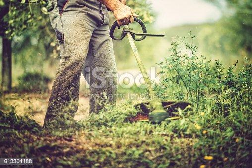 istock mows the grass 613304188