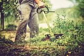 mows the grass