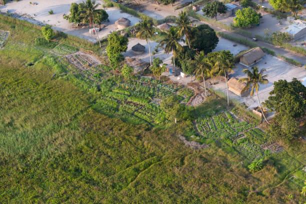 mozambik tarım - uçak point of view stok fotoğraflar ve resimler