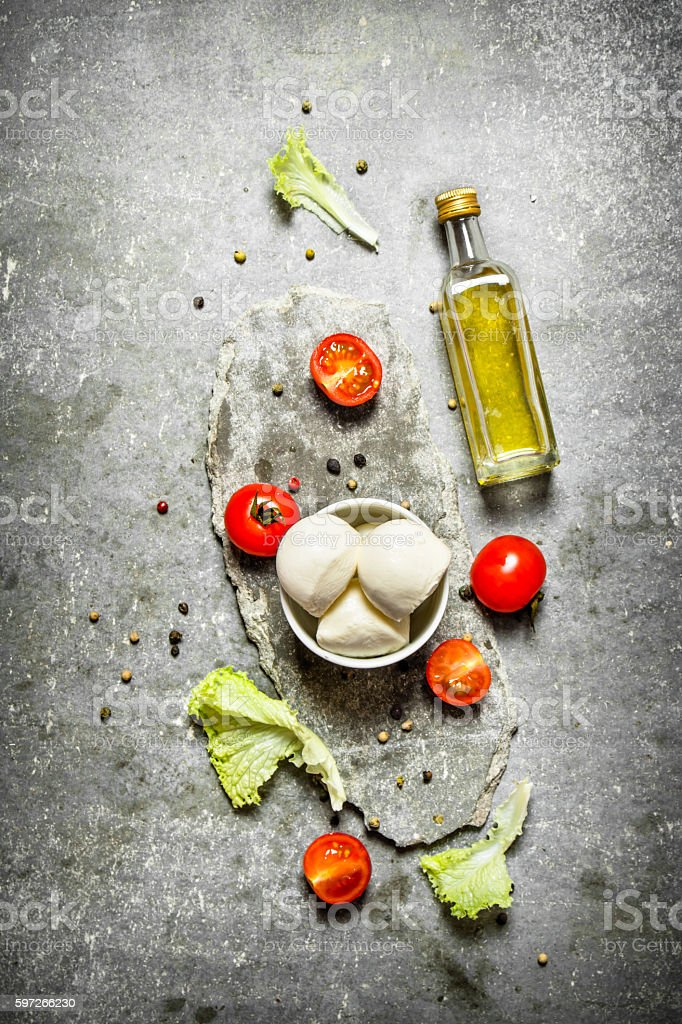 Mozzarella with olive oil, tomatoes and spices. royalty-free stock photo