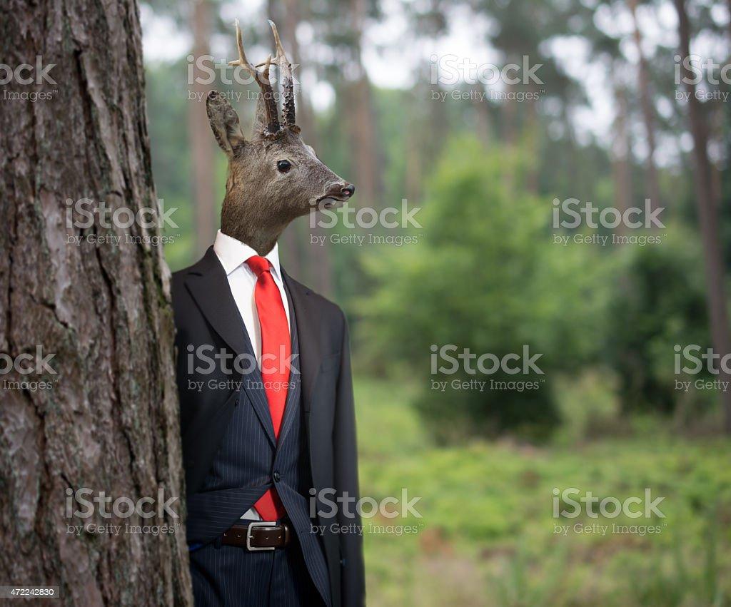 Mr Deer stock photo