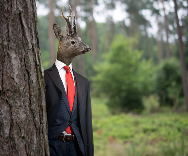 mr deer - steampunk fashion stock photos and pictures