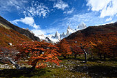 Idyllic Patagonian landscape near Mount Fitz Roy