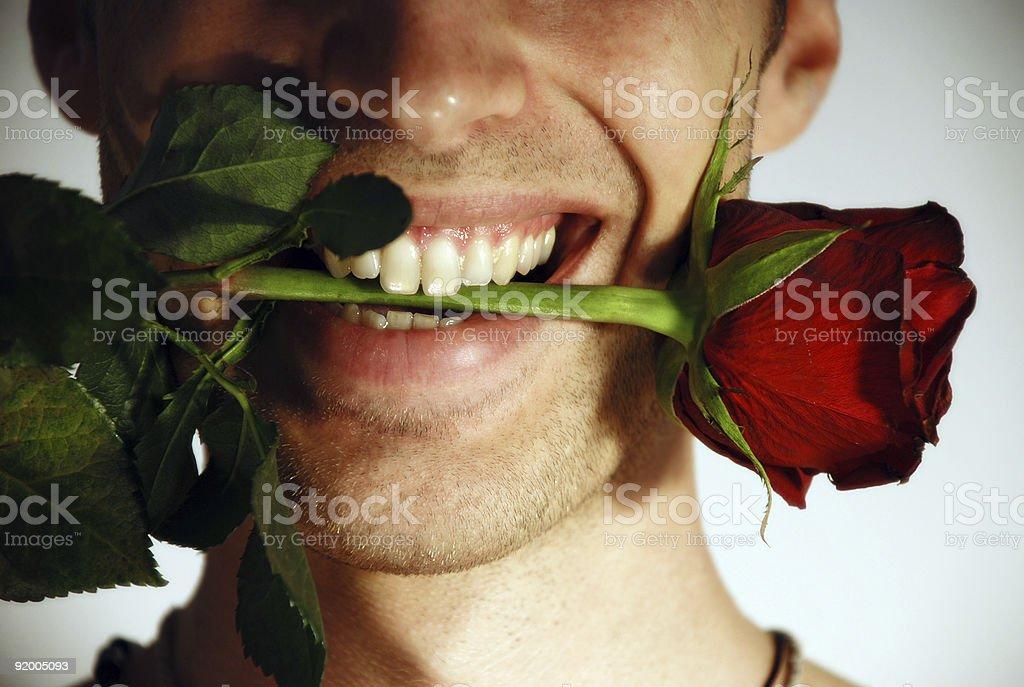 mr romantic royalty-free stock photo