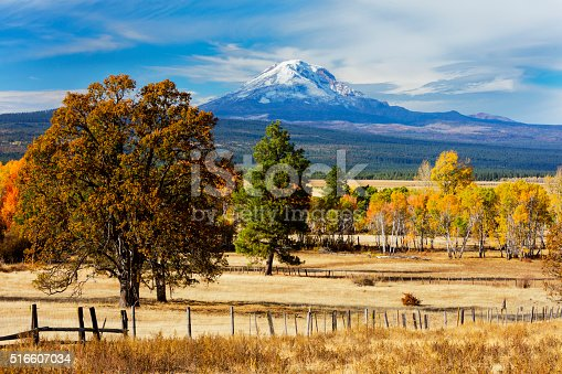 Autumn scene in southern Washington state with Mt Adams in the background.