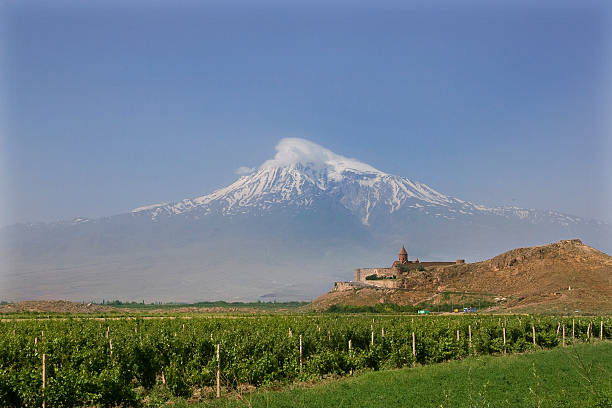 Mt Ararat A historical view of the mountain Ararat from Armenia, monastery Khor Virap and vineyards armenia country stock pictures, royalty-free photos & images