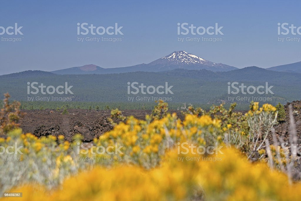 Mt Bachelor in Central Oregon royalty-free stock photo