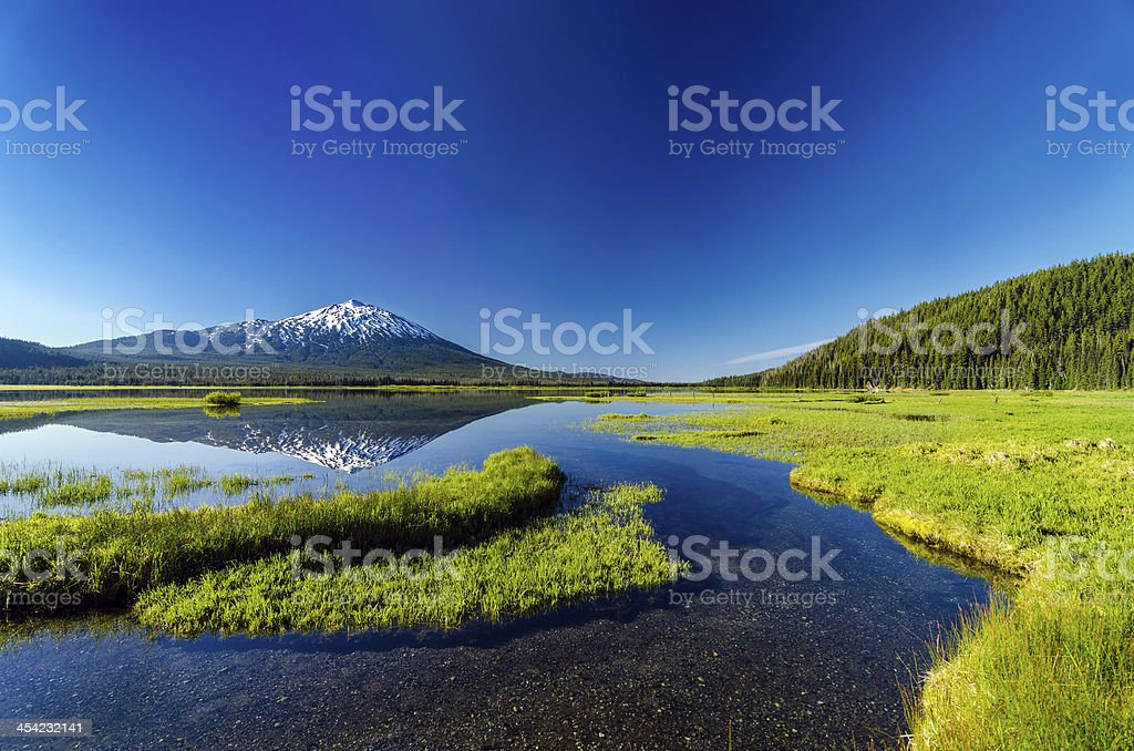 Mt. Bachelor Reflection and Forest stock photo