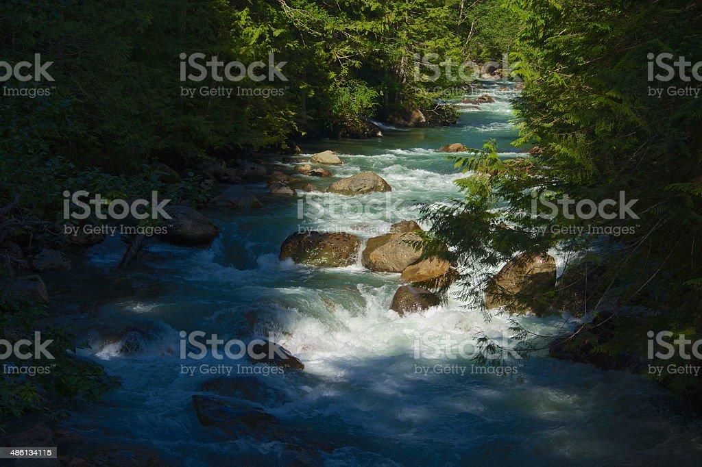 Mt. Baker Green River stock photo