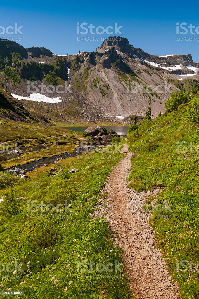 Mt. Baker National Forest stock photo