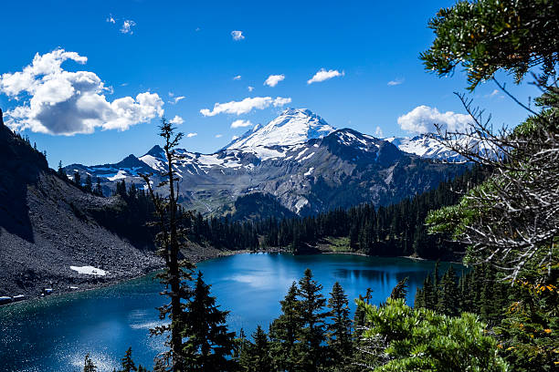 mt baker - naturediver stock pictures, royalty-free photos & images