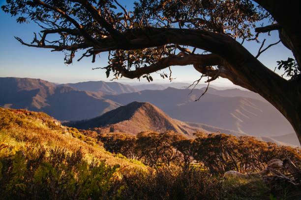 Mt Buller Sunset View Australia stock photo