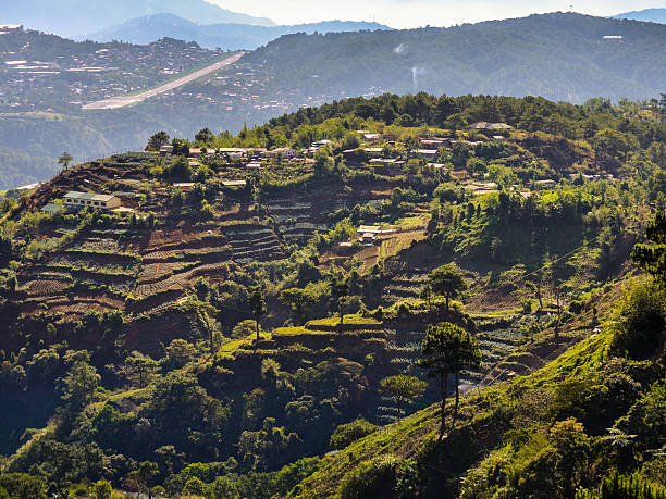 mt. cabuyao rice terraces - baguio city stock photos and pictures