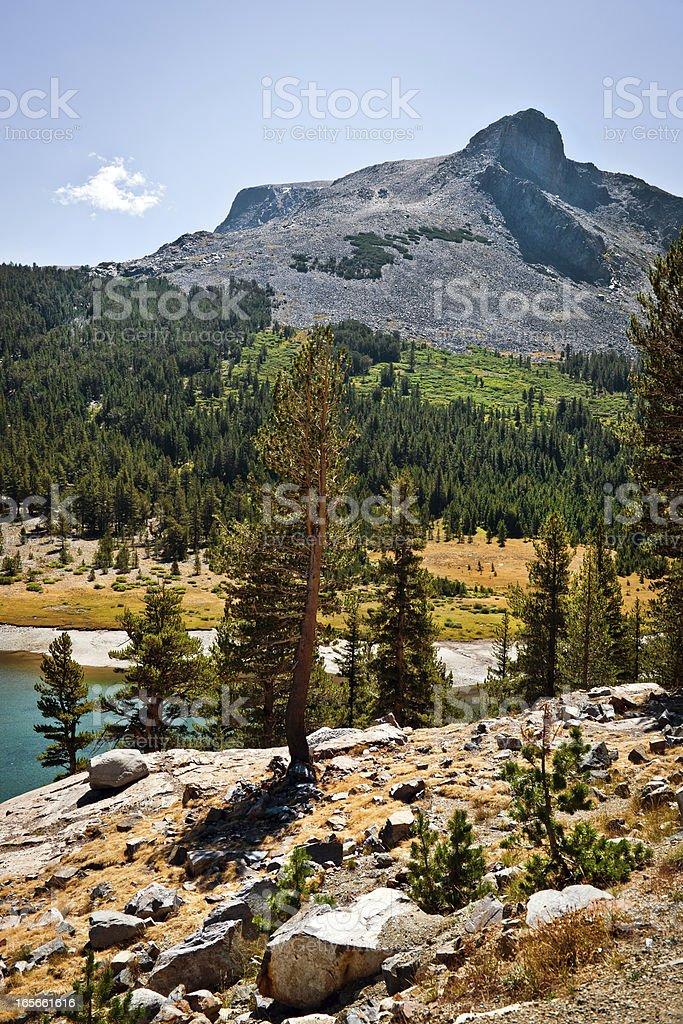 Mt. Dana at Tioga Lake, Yosemite, California, USA royalty-free stock photo