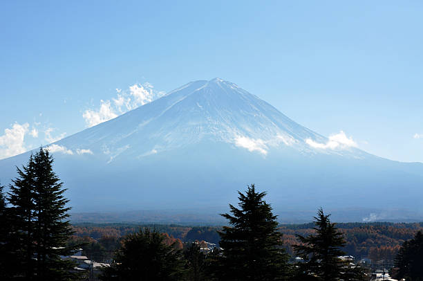 Mt Fuji And Surrounding Forest