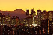 istock Mt Fuji and Tokyo Skyline : Day and Night 1205057603