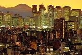 istock Mt Fuji and Tokyo Skyline : Day and Night 1205058446