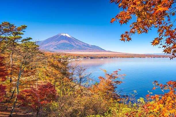 富士山秋 - yamanaka lake ストックフォトと画像