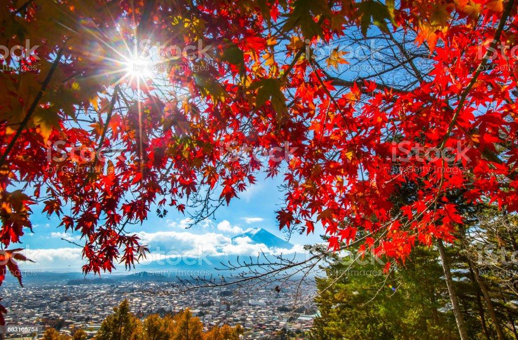富士山在秋天 免版稅 stock photo