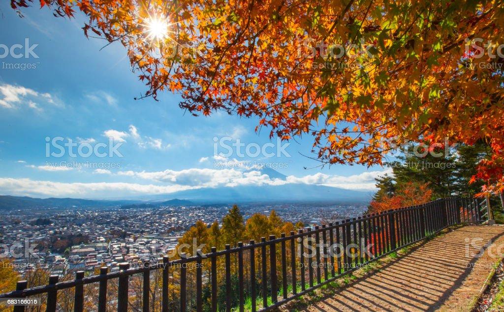 Mt. 푸지 가을 royalty-free 스톡 사진