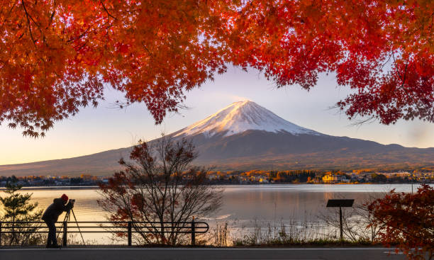 Mt Fuji in autumn view from lake Kawaguchiko Mt Fuji in autumn view from lake Kawaguchiko lake kawaguchi stock pictures, royalty-free photos & images