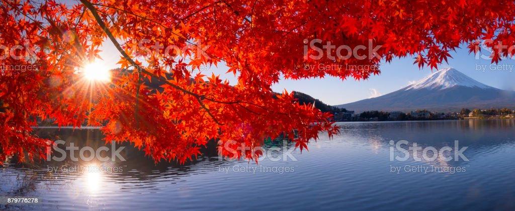 Mt Fuji in autumn view from lake Kawaguchiko royalty-free stock photo