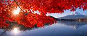 istock Mt Fuji in autumn view from lake Kawaguchiko 879776278