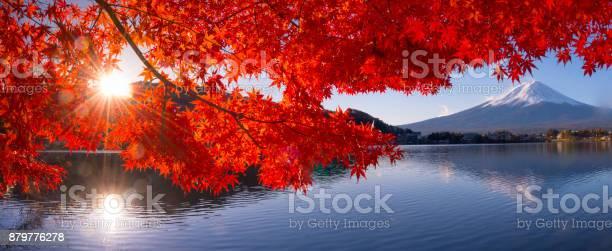 Mt fuji in autumn view from lake kawaguchiko picture id879776278?b=1&k=6&m=879776278&s=612x612&h=9a4ui3kknyupy9bz ma42hd7ihbhpo6fqw8i7luxnim=