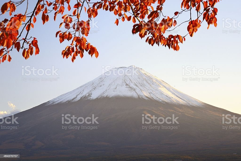 Mt. Fuji in the Autumn royalty-free stock photo