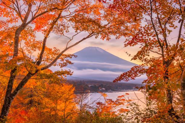 富士山、日本の秋 - yamanaka lake ストックフォトと画像