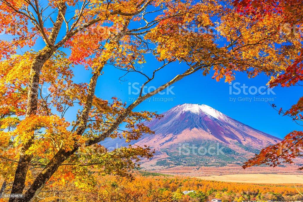 Mt. Fuji, Japan Mt. Fuji, Japan from Yamanaka Lake in autumn. Autumn Stock Photo