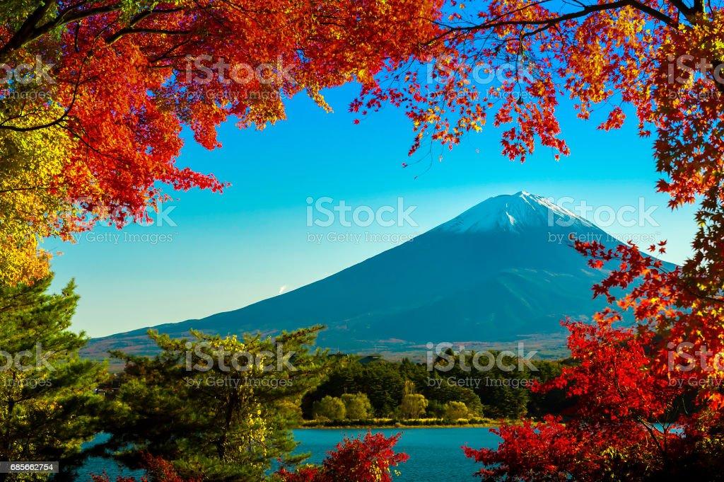 Berg Fuji Lizenzfreies stock-foto
