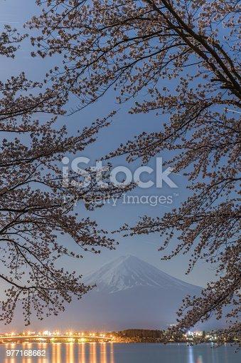 istock Mt. Fuji 977168662