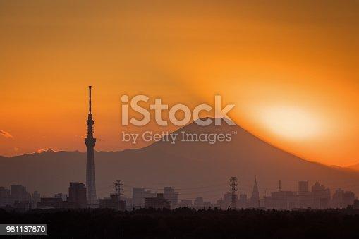 1131743616 istock photo Mt. Fuji 981137870