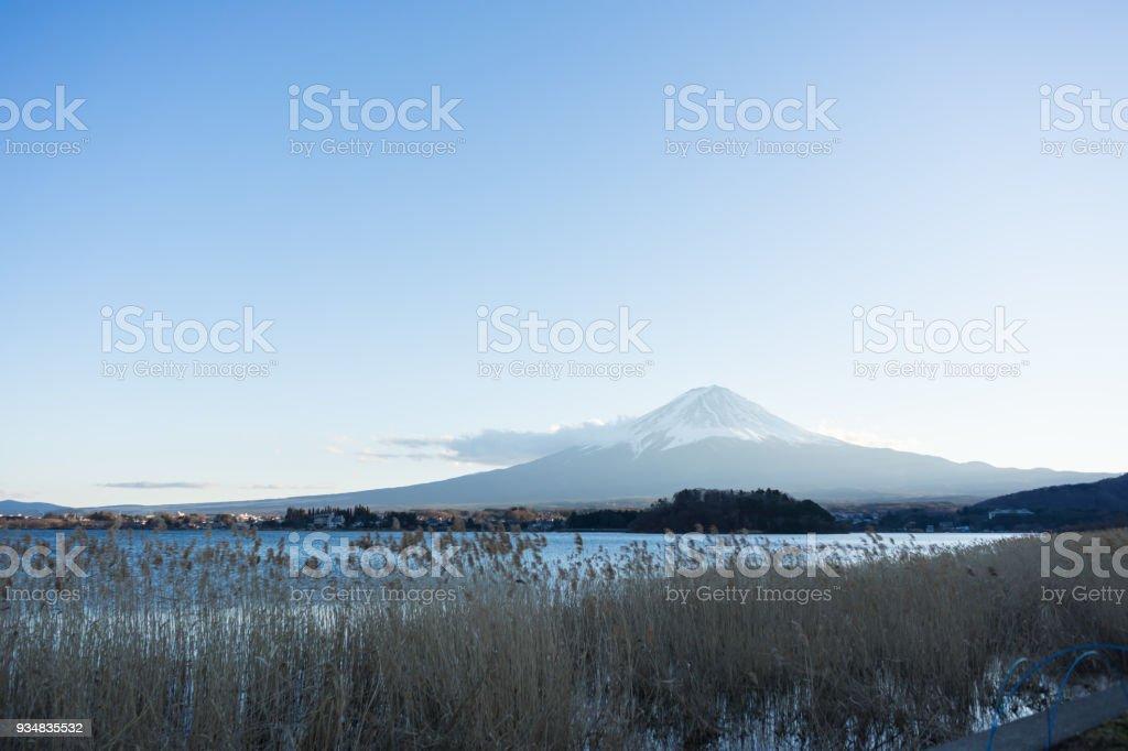 후 지 가와구치 코 호수, 저녁에, 일본 야마나시 현에에서 라벤더 필드에서 장면. - 로열티 프리 0명 스톡 사진