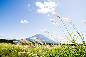 Asagirikogen 高原、日本で秋に日本のススキと富士山