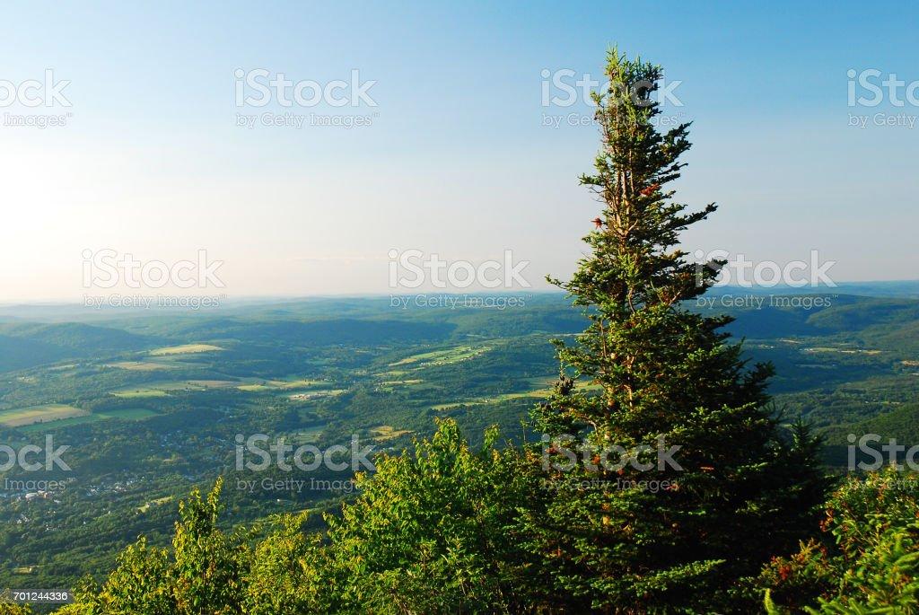 Mt Greylock Summit stock photo