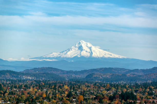 Mt. Hood and Forested Hills View of Mt. Hood and forest covered hills as seen from Portland, Oregon mt hood stock pictures, royalty-free photos & images