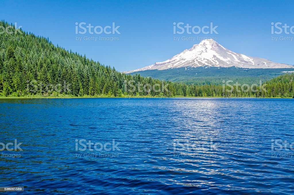 Mt Hood and Trillium Lake in Summer stock photo