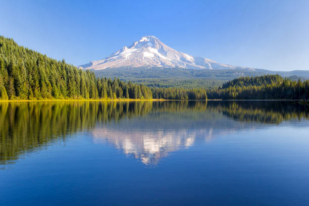 Mt Hood at Trillium Lake on a sunny blue sky day in Oregon USA Mount Hood at Trillium Lake on a sunny blue sky day in Oregon United States America mt hood stock pictures, royalty-free photos & images